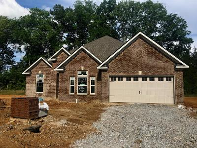 Single Family Home Active - Showing: 1422 Blackman Woods Ct Lot 90c