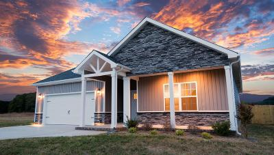 Clarksville TN Single Family Home Active - Showing: $216,275