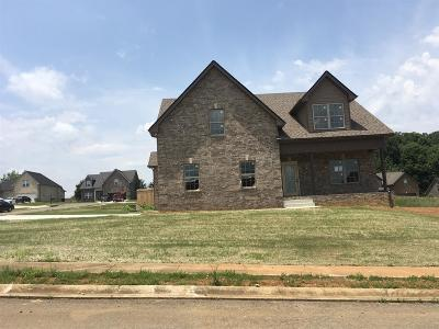 Cheatham County Single Family Home Active - Showing: 1035 Harmany Trail