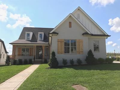 Thompsons Station  Single Family Home For Sale: 3157 Pleasantville Bridge Rd