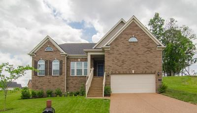 Mt Juliet Single Family Home For Sale: 15 Settlers Ct