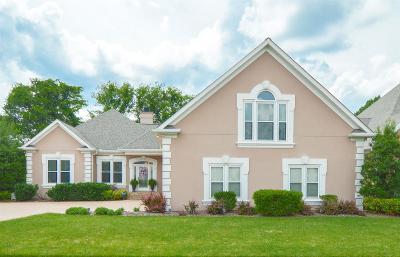 Hendersonville Single Family Home Active - Showing: 79 Blue Ridge Trce