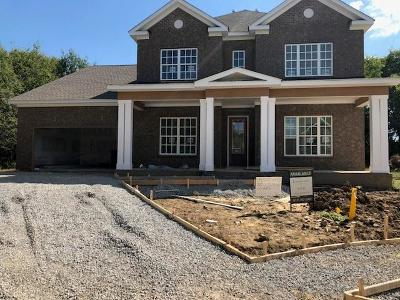 Hendersonville Single Family Home For Sale: 220 Catalina Way