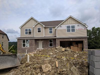 Hendersonville Single Family Home Active - Showing: 133 Manor Way