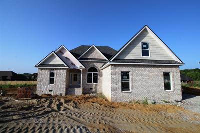 Lavergne Single Family Home Active - Showing: 208 McGreevy Dr (Lot 119)