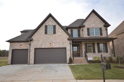 Williamson County Single Family Home Under Contract - Not Showing: 3027 Elkhorn Place (20)