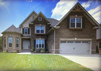 Spring Hill Single Family Home For Sale: 3011 Foust Dr