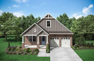 Hendersonville Single Family Home For Sale: 107 Edenburg Dr. Lot 325