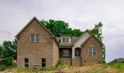 Hendersonville Single Family Home For Sale: 1028 Luxborough Dr