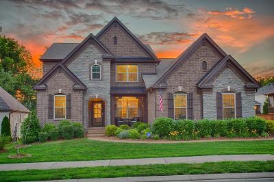 Hendersonville Single Family Home For Sale: 104 Macy Dr