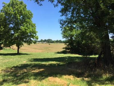 Murfreesboro Residential Lots & Land For Sale: 4646 Shelbyville Hwy