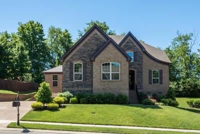 Hendersonville Single Family Home Active - Showing: 112 Fountain Brooke Dr