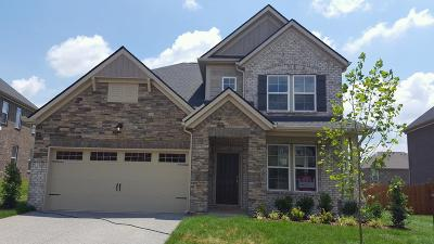 Mount Juliet Single Family Home Under Contract - Not Showing: 5035 Napoli Drive Lot # 116