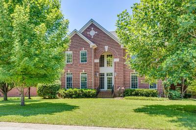 River Landing Single Family Home For Sale: 245 Gillette Drive