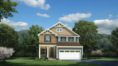 Spring Hill Single Family Home Active - Showing: 2097 Morton Drive Lot 120