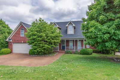 Hendersonville Single Family Home For Sale: 127 Shiloh Rdg