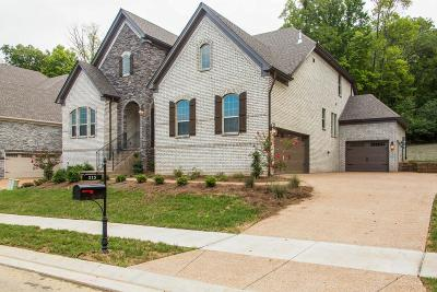 Hendersonville Single Family Home Active - Showing: 215 South Malayna Dr Lot 138