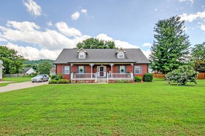 Pegram Single Family Home Under Contract - Showing: 557 Bluff View Dr