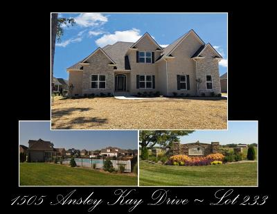 Single Family Home For Sale: 1505 Ansley Kay Drive - Lot 233