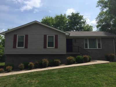 Hendersonville Single Family Home Active - Showing: 183 Berrywood Dr