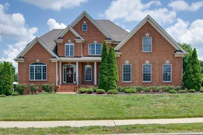 Hendersonville Single Family Home Active - Showing: 1028 Somerset Downs Blvd