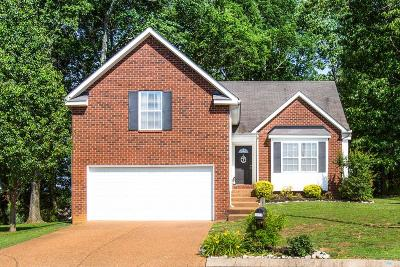 Spring Hill Single Family Home Active - Showing: 8010 Tiger Ct