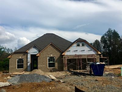 Single Family Home Active - Showing: 1410 Blackman Woods Ct Lot 93c