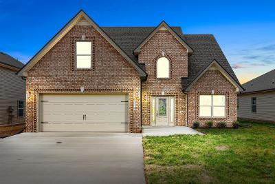 Clarksville Single Family Home Under Contract - Showing: 108 Rossview Place