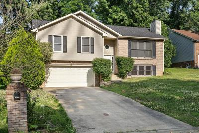 Clarksville Single Family Home Active - Showing: 1211 Verkler Dr