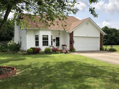 Single Family Home For Sale: 127 Pleasant Ln