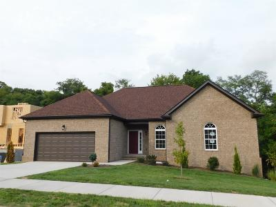 Wilson County Single Family Home Active - Showing: 813 Tanager Pl