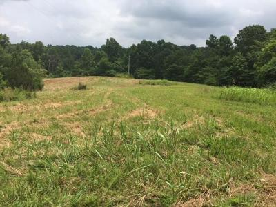 Christian County, Ky, Todd County, Ky, Montgomery County Residential Lots & Land Active - Showing: 3475 Shiloh Canaan Rd