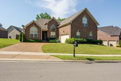 Hendersonville Single Family Home Active - Showing: 116 Fountain Brooke Dr