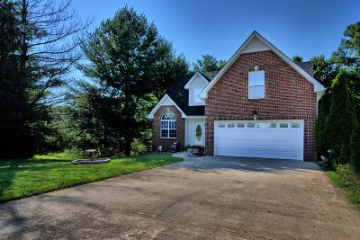 Clarksville Single Family Home Active - Showing: 284 Shadyside Ln