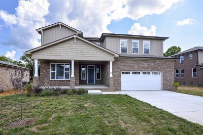 Smyrna Single Family Home For Sale: 607 Inez Drive Lot 10