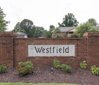 Davidson County Condo/Townhouse Active - Showing: 250 Westfield Dr