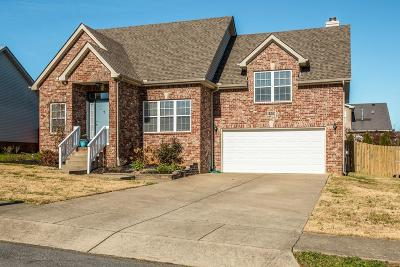 Spring Hill Single Family Home Active - Showing: 1303 Chapmans Retreat Dr