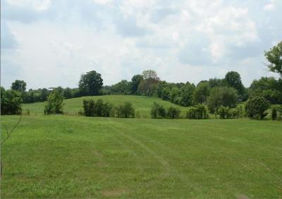 Springfield Residential Lots & Land For Sale: Highway 41 South