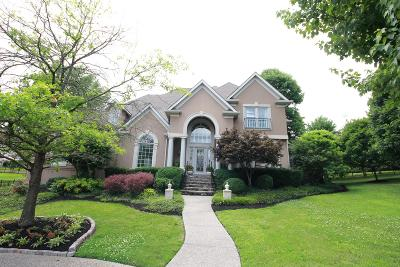 Hendersonville Single Family Home Active - Showing: 129 Blue Ridge Dr