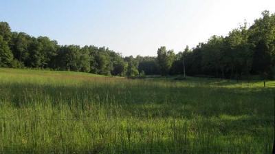 Centerville Residential Lots & Land For Sale: Joes Branch Rd