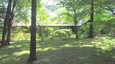 Sewanee Single Family Home For Sale: 170 Laurel Point Ln