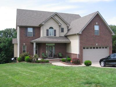 Clarksville Single Family Home For Sale: 542 Winding Bluff Way
