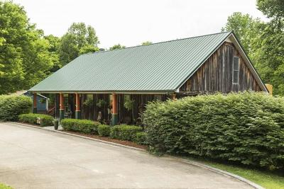 Kingston Springs Single Family Home Active - Showing: 577 Mount Pleasant Rd