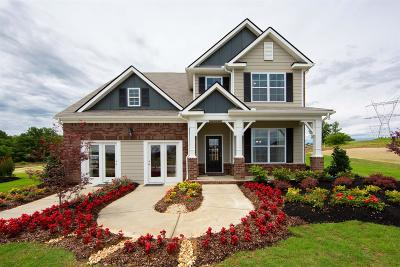 Spring Hill Single Family Home Active - Showing: 7013 Belmont Drive, Lot #403