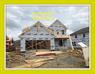 Gallatin Single Family Home Active - Showing: 358 Black Thorn Lane #148