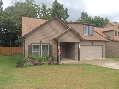 Clarksville Single Family Home For Sale: 1182 Eagles Bluff Dr