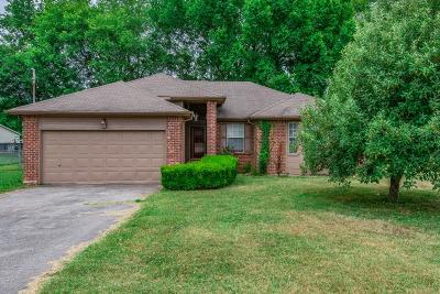 Smyrna Single Family Home Active - Showing: 700 Ava Ct