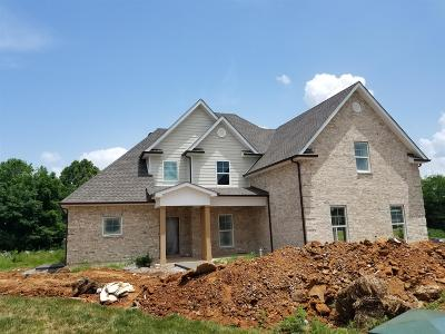 Murfreesboro TN Single Family Home Active - Showing: $349,900