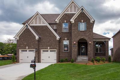 Mount Juliet Single Family Home Active - Showing: 3047 Elliott Drive #92