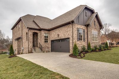 Hendersonville Single Family Home For Sale: 996 Golf Club Ln E #26